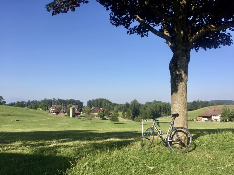 Das Rennrad auf dem Albispass